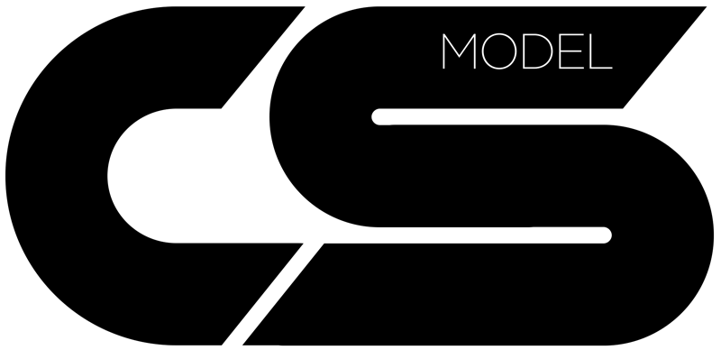 CS_Model-silver-car-blanco.png
